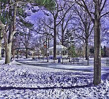 winter in the park by ARTforcancer