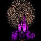 Cinderella's Castle by Jerry  Mumma