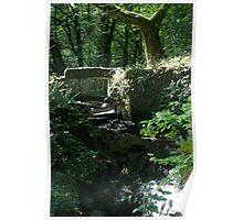 Parc du Morvan Bridge Poster