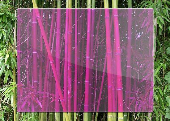Bambou by ariaznet