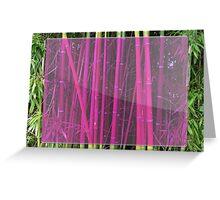 Bambou Greeting Card