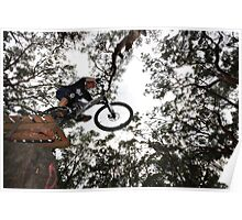 Ken on the big ramp Poster