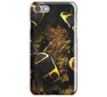 Beetles  iPhone Case/Skin