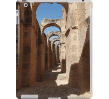 ancient ruins iPad Case/Skin