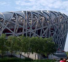 'Bird Nest' Beijing National Olympic Stadium by victoriakwwu