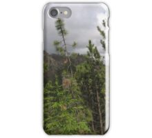 Pine Trees on the Side of a Mountain iPhone Case/Skin