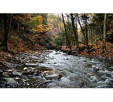Fall Stream Photographic Print