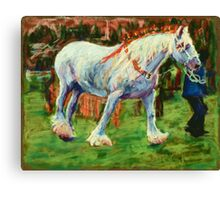 Shire Horse at Rally Canvas Print