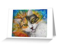 Cat Gracie Greeting Card