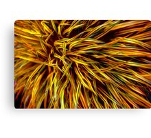 Grass Canvas Print