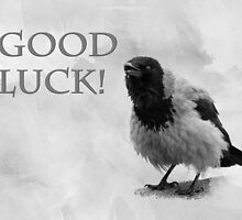 Good Luck by luckypixel