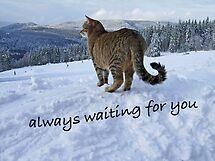 always waiting for you........ by GOSIA GRZYBEK