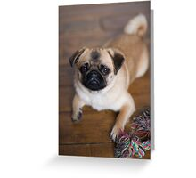 Daphney Greeting Card