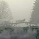 Walking the bridge by naffarts