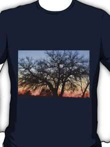 Silhouette At Sunset T-Shirt
