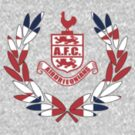 AFC Perry small by Airdrieonians