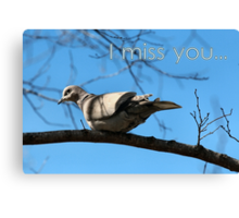 Miss You Dove Card Canvas Print