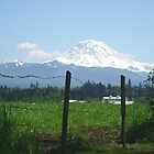 Rainier Country by Tori Snow