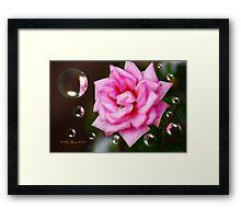 Pink on Pink Framed Print