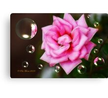 Pink on Pink Canvas Print