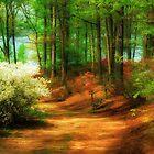 Favorite Path by Lois  Bryan