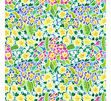 Pretty Spring Primroses Pattern Photographic Print