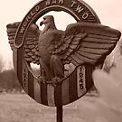WW2 Vet Remembered by natnvinmom