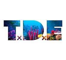 TDE Coral Reef Waters Photographic Print