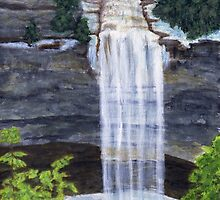 Late Spring Freeze At Fall Creek Falls by M Rogers