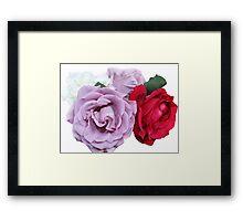 Bouquet of Garden Roses Framed Print