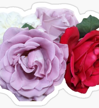 Bouquet of Garden Roses - Hipster/Pretty/Trendy Flowers Sticker
