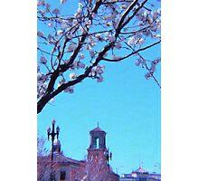 Citi Plaza & Dogwoods 02 Photographic Print