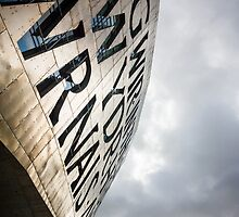 Wales Millenium Centre, Cardiff by Sue Martin