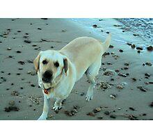 I love the beach. Photographic Print