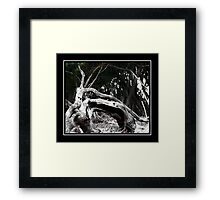 Poetic Decay Framed Print