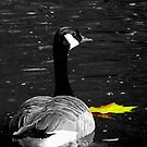 Goose with the Golden Leaf by Darlene Lankford Honeycutt