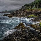 Little Whale Cove by Charles & Patricia   Harkins ~ Picture Oregon