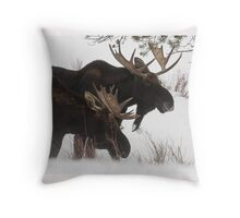 Moose Bros. #2 Throw Pillow
