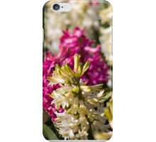 Colourful Hyacinths iPhone Case/Skin