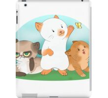 Playful kitten furends iPad Case/Skin