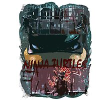 Ninja Turtles! Photographic Print