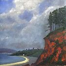 The Headland at Amroth by WILT