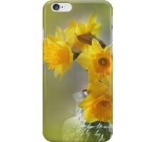 My First Daffodils iPhone Case/Skin