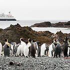 Visitors by Phill Danze