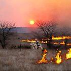 Kansas Rancher Checks Fire Line by Catherine Sherman