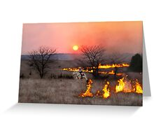 Kansas Rancher Checks Fire Line Greeting Card