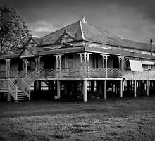 Queenslander by Chris Dowd