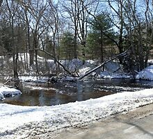 Beaver River at Old School House Road [b] © 2009  by Jack McCabe