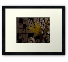 Natures Canon Framed Print