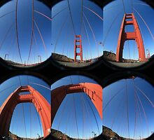 Golden Gate by Aysia Stieb